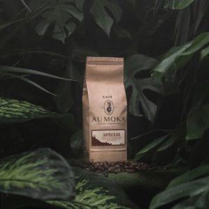 Spezialmischung – Dschungel
